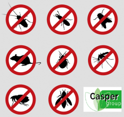 gallery/pest_control_services_in_hyderabad